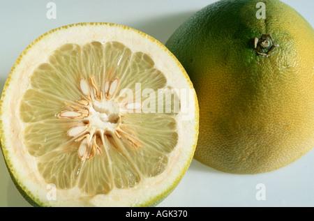 Pumelo Citrus grandis Pampelmuse Rautengewaechse Rutaceae innen Studio indoor - Stock Photo