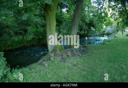 river dove dovedale peak district national park derbyshire staffordshire england uk - Stock Photo