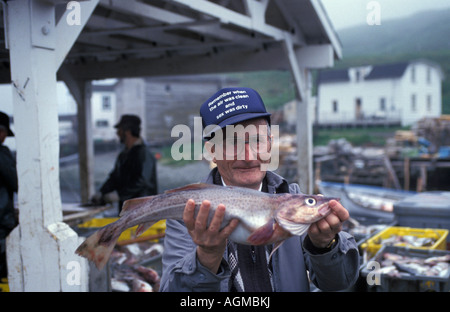 Canada, Saint John, Fisherman showing fish - Stock Photo