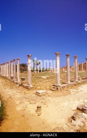Salamis, Columns of the Gymnasium, Famagusta, North Cyprus - Stock Photo
