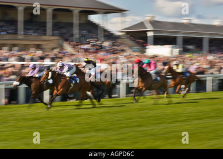 Blurred horses in horse racing in front of a large crowd - Stock Photo