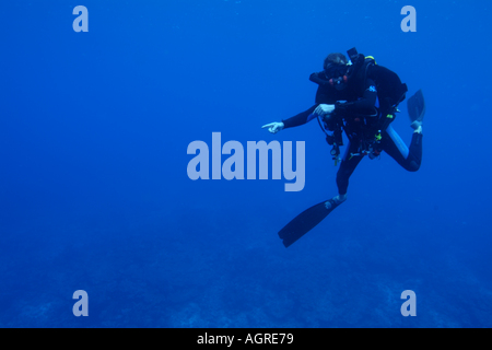 Maldives north male atoll lankan a scuba diver pointing a giant manta ray manta birostris around the cleaning station - Stock Photo