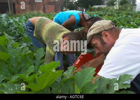 Volunteers work in garden to grow food for soup kitchen - Stock Photo
