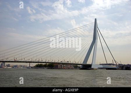 The Erasmusbrug crossing the Nieuwe Maar river at Rotterdam Netherlands - Stock Photo