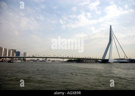 The Erasmusbrug Bridge crossing the Nieuwe Maas river at Rotterdam Netherlands - Stock Photo
