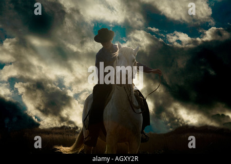 french woman riding her horse on a farm near angouleme in stock photo royalty free image. Black Bedroom Furniture Sets. Home Design Ideas