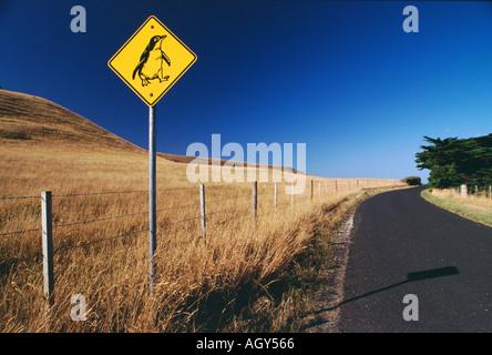 A penguin road crossing sign near Stanley Tasmania - Stock Photo