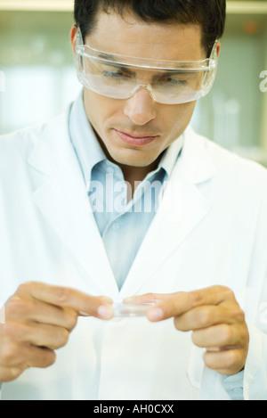 Male scientist holding Petri dish