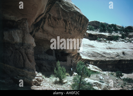 Remote Anasazi cliff dwelling, Moon House ruin, located in McCloyds Canyon, southern Utah - Stock Photo