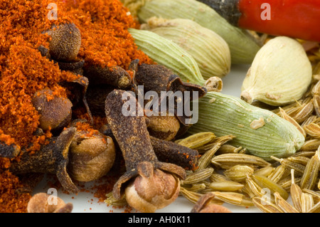 A selection of spices against a white background - Stock Photo