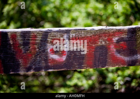 Vote painted in red on a wooden rail - Stock Photo