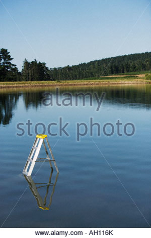 A ladder submerged in the water - Stock Photo