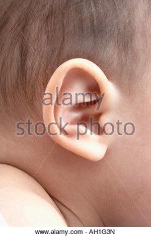 A baby's ear - Stock Photo