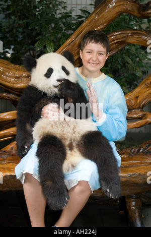 Young man holding eight month old baby Giant Panda at Chengdu Panda Breeding & Research Centre, Chengdu, Sichuan - Stock Photo