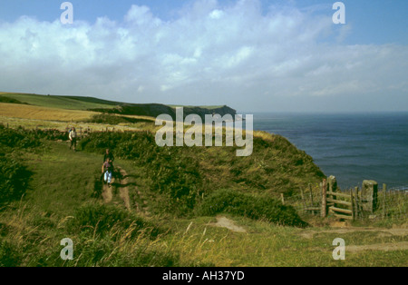 View north along sea cliffs between Whitby and Robin Hoods Bay, North York Moors coast, North Yorkshire, England, - Stock Photo