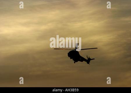 Super Puma - Stock Photo