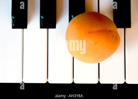 Piano keyboard close up with alone apricot - Stock Photo