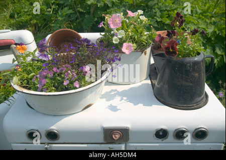 Flowerpots on an old stove Ninilchik near Homer Alaska USA - Stock Photo