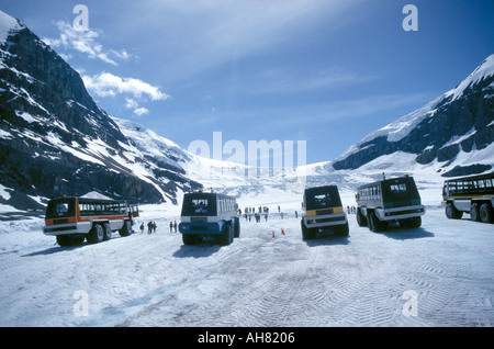 Snow coaches on the ATHABASCA glacier in the Banff National Park Canada - Stock Photo