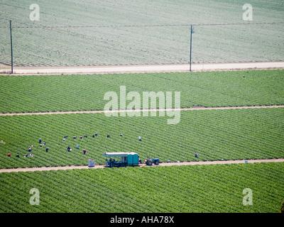 Farm fields - Stock Photo