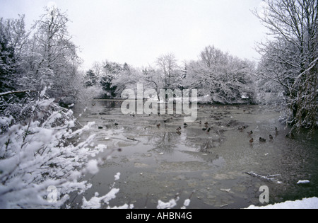 Dulwich Park lake in winter South London - Stock Photo