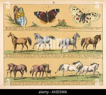 Textbook 1880 Plate 10 - Stock Photo