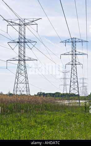 PRESERVES Lakemoor Illinois High tension and voltage power lines run through wetlands and marsh area - Stock Photo