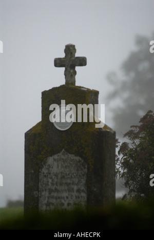 Graves at Ravlunda in Sweden - Stock Photo