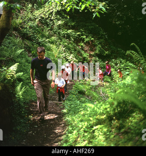 Schoolchildren kids on a nature walk at Gelli Aur Country Park Carmarthenshire Wales UK   KATHY DEWITT - Stock Photo