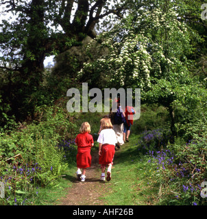 School children on a nature walk at Gelli Aur Country Park Carmarthenshire Wales UK - Stock Photo