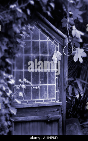 stain glass window - Stock Photo