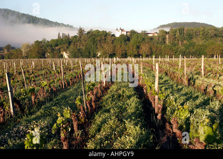 Early spring landscape view of vineyard and small chateau in south west France - Stock Photo