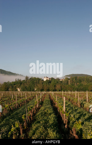 Early spring portrait view of vineyard and small chateau in south west France - Stock Photo
