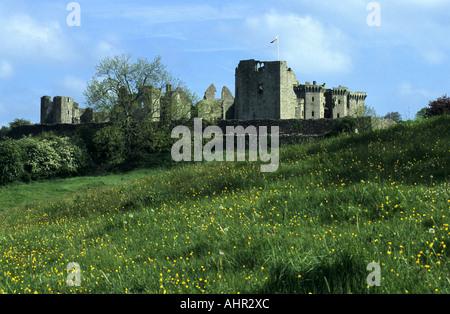 Raglan Castle, Monmouthshire, Wales, UK - Stock Photo