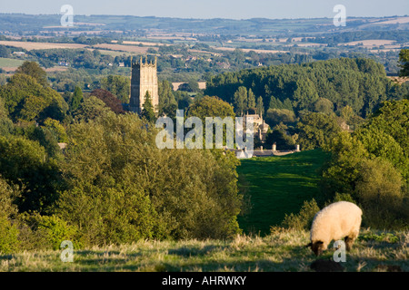 A sheep grazing the hills above the wool church of St James in the Cotswold town of Chipping Campden. Gloucestershire - Stock Photo