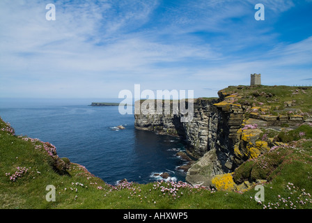 dh Marwick Head BIRSAY ORKNEY Kitchener Memorial sea pinks on seacliff top RSPB Nature reserve coast uk - Stock Photo