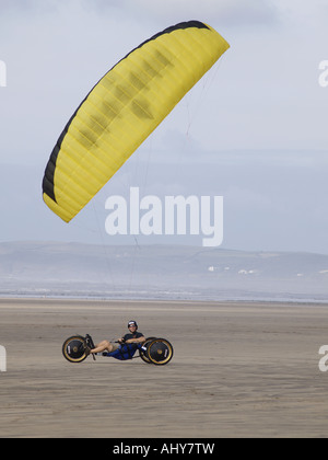 Parakarter directing his yellow kite, windy day on a sandy beach, upright - Stock Photo