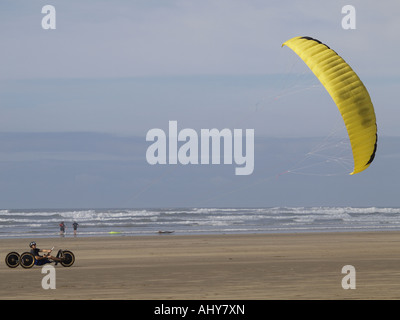 Parakarter directing his yellow kite, windy day on a sandy beach - Stock Photo