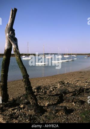 Bradwell Waterside and boat moorings on River Blackwater - Stock Photo