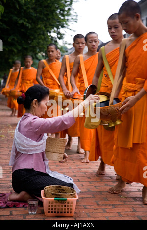 Local woman gives rice Alms to monks in Luang Prabang Laos - Stock Photo