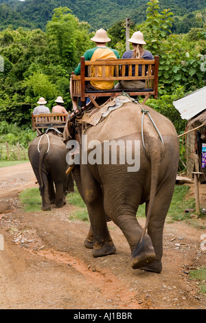 Guests riding a pair of elephants at The Elephant Park Project near Luang Prabang Laos - Stock Photo