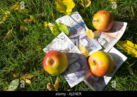 Apples and twenty pound notes lying on the ground. - Stock Photo