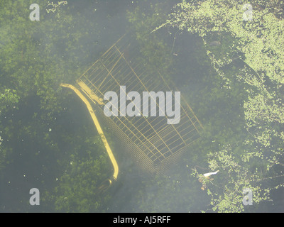 Watery Grave for Shopping trolley 2 - Stock Photo