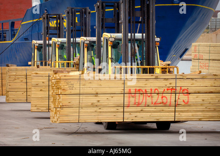 Importing of timber into the UK: fork lift trucks transporting timber on Shoreham dockside. Picture by Jim Holden. - Stock Photo