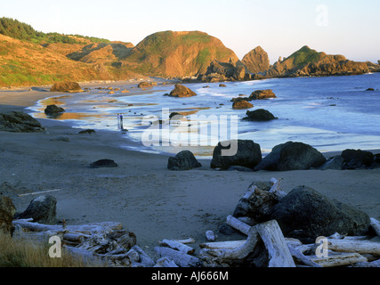 Couple walking along shore at Boardman State Park on Pacific Coast of Oregon - Stock Photo