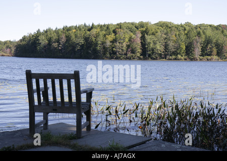 pocono lake preserve asian singles Browse pocono lake preserve pa real estate listings to find homes for sale, condos, commercial property, and other pocono lake preserve properties.