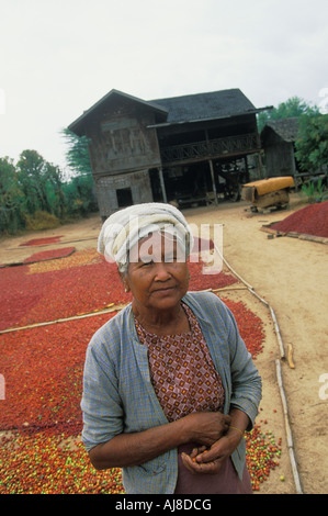 Village Woman in Front of her House in Bagan (Pagan) located in Myanmar Burma - Stock Photo