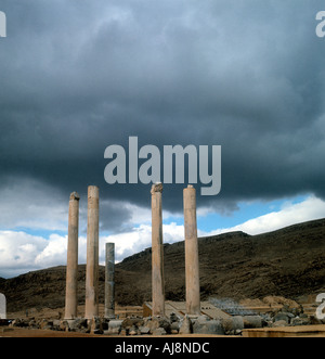 The Apadana at Persepolis - Stock Photo