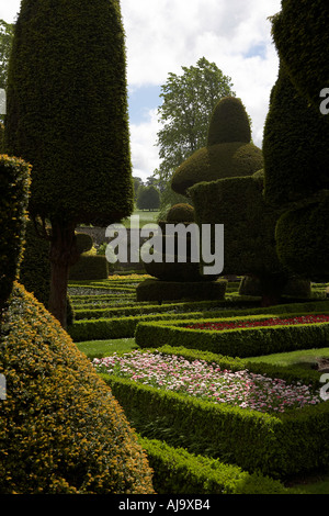Levens hall and gardens lake district cumbria topiary gardens - Stock Photo