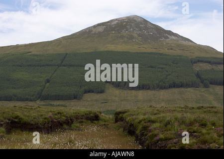 mackoght mountain in the derryveagh range with conifer forested area on slopes and peat bog - Stock Photo